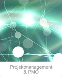 ProjektmanagementPMO